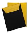Q24439 - Q24439 -  Custodia porta I-Pad 2